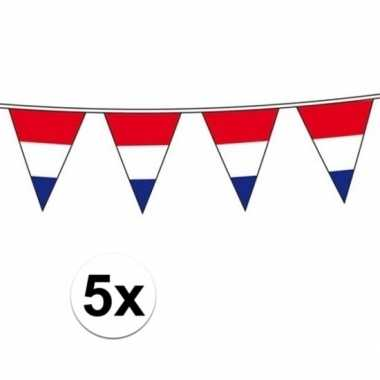 5x vlaggenlijn hollandse vlaggetjes
