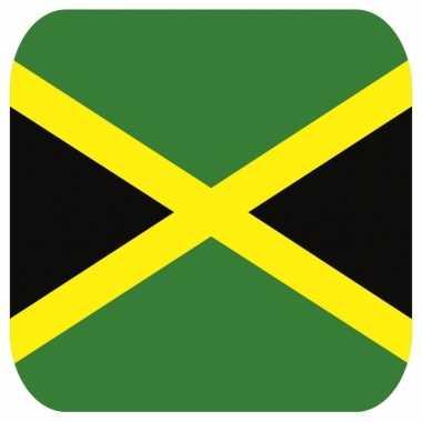 Bierviltjes jamaica thema 15 st