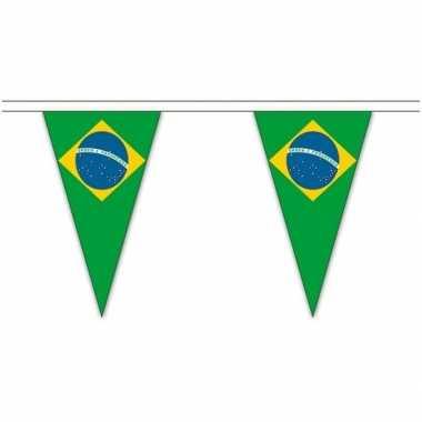 Braziliaanse landen versiering vlaggetjes 20 meter