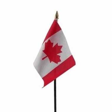 Canada luxe zwaaivlaggetje polyester