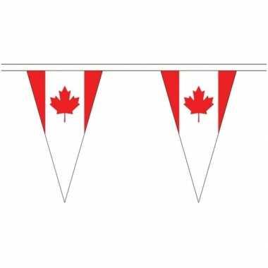 Canadese landen versiering vlaggetjes 5 meter