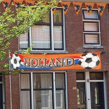 Grote banners holland 370 60