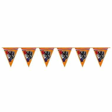 Grote oranje leeuw vlaggenlijn 15 meter
