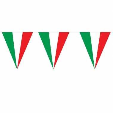 Italiaanse vlaggenlijnen 5 meter