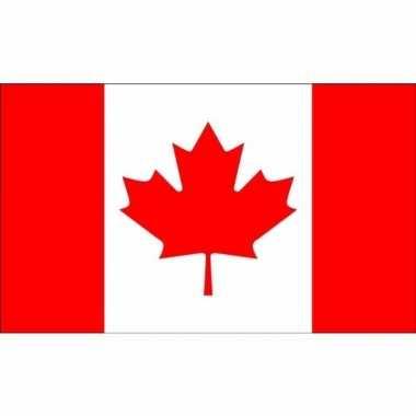 Kleine vlag canada 60 90