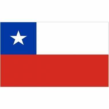Kleine vlag chili 60 90
