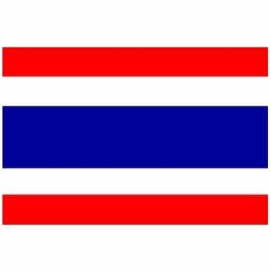 Kleine vlag thailand 60 90