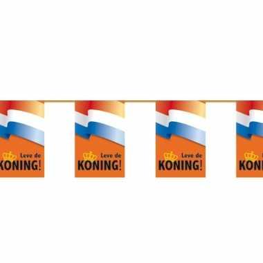 Koningsdag lang leve koning vlaggetjes