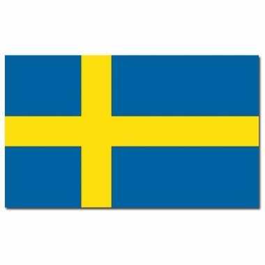 Landen vlag zweden