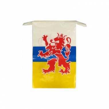 Limburgse vlaggenlijn 10 meter