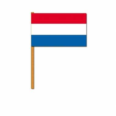 Nederlandse handvlag