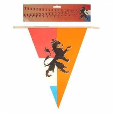 Oranje vlaggenlijnen leeuw