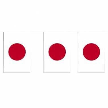 Papieren vlaggenlijnen japan