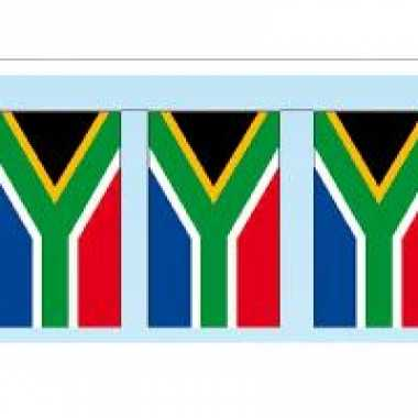 Papieren vlaggenlijnen zuid afrika