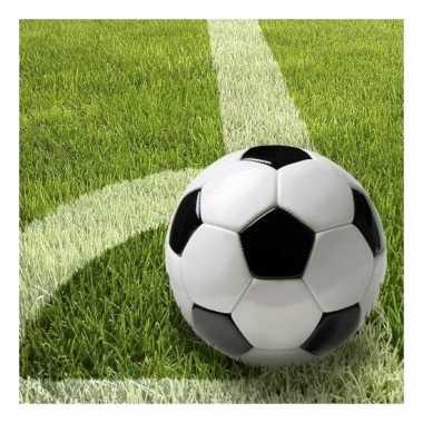 Thema voetbal servetten 33