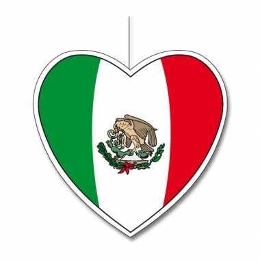 Versiering hart mexicaanse vlag 30
