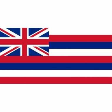 Vlag hawaii ophangringen 90 150