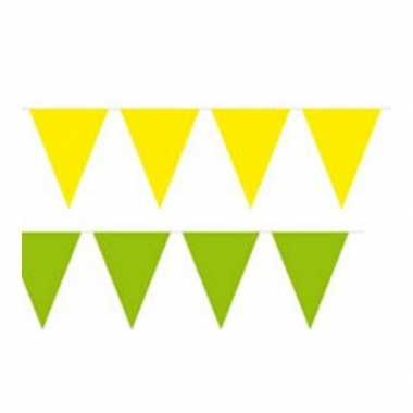 Vlaggenlijnen setje brazilie