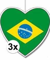 3x thema brazili hangversiering hart 28