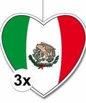 3x thema mexico hangversiering hart 28