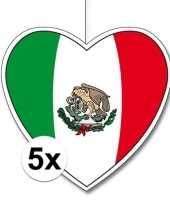 5x thema mexico hangversiering hart 28